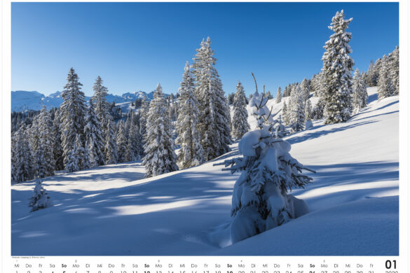 Kalender: Swiss Nature 2020