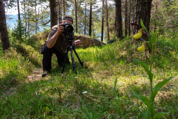 Fotoworkshop – Orchideen im Bergsturzgebiet – 28. Mai 2020